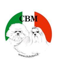 CLUB BOLOGNESE E MALTESE